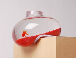 a balancing fishbowl with a gold fish inside