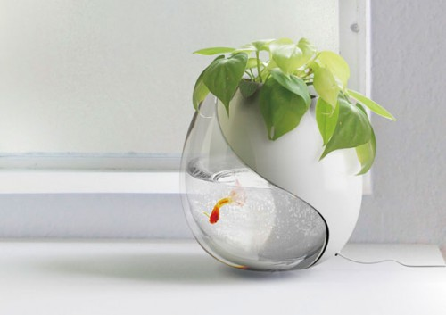 a plant pot and fishbowl in one 