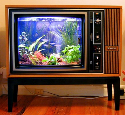 an aquarium made from an old tv