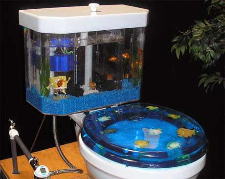 Aquarium toilet image