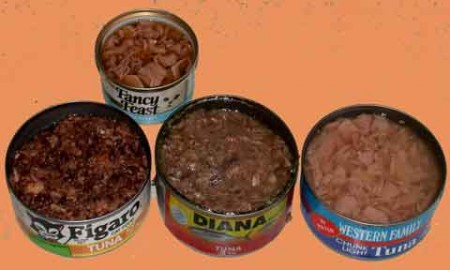 a variety of tins of open cat food