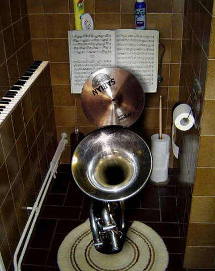 Music lovers toilet image