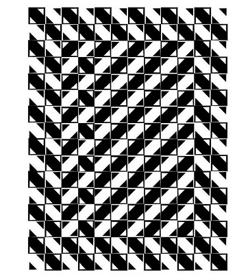 a black and white illusion picture of crooked lines