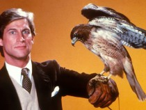Hollywood Set To Make Manimal Movie
