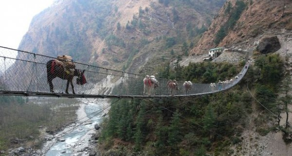 10 Most Scariest Bridges In The World – Could You Cross Them?
