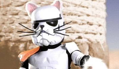 Star Wars Parody Video - Paw Warz