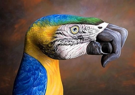 20 amazing handimals hand art pictures for Amazing hand drawings