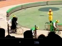 Bear vs Monkey Bicycle Race Turns Into Bear Eats Monkey Horror