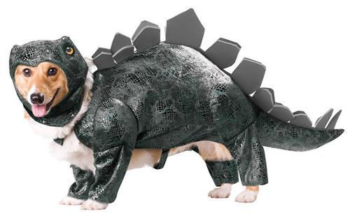 crazy dog costumes 19