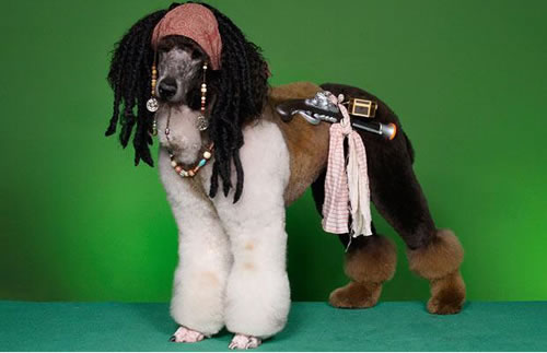 crazy dog costumes 2
