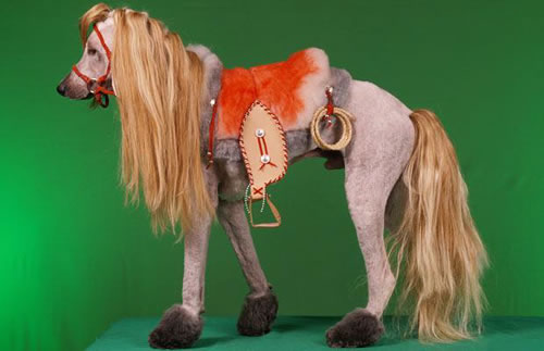 Horse. crazy dog costumes 4 & 20 Crazy Dog Costumes You Would Love To Put On Your Pooch
