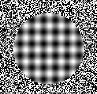 Optical Illusions Brain Teasers