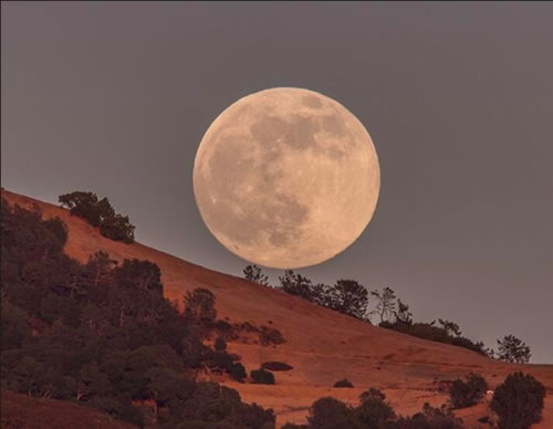 Amazing Photos Of The Super Moon 2013 5
