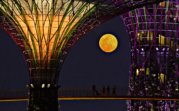 Amazing Super Moon Pictures Taken From Around The World  10