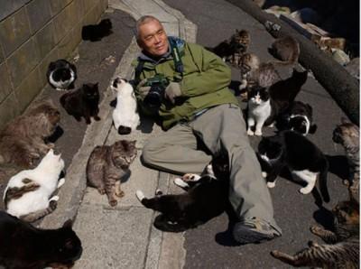 Tashirojima - Cat Island 5