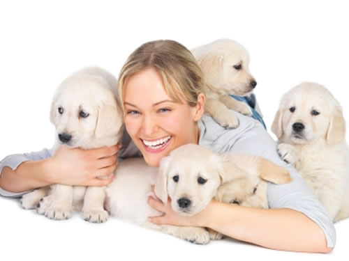 Top 10 Advantages Of Being A Dog Owner