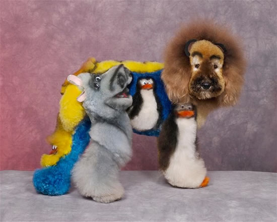 22 Crazy Dog Grooming Ideas You Won T Believe