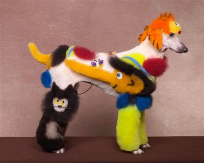 crazy dog grooming (9)