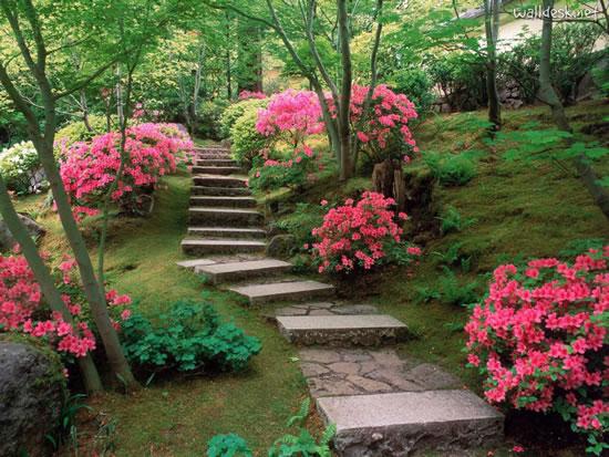 Backyard Flower Garden flower garden. fabulous small flower gardens wallpaper flower