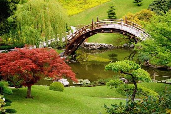Largest Flower Garden In The World (9)