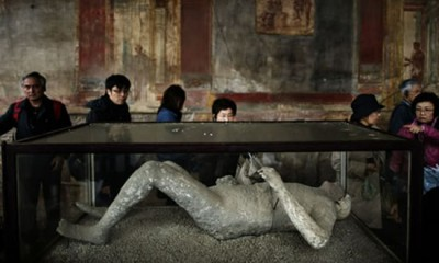 pompeii british museum (7)