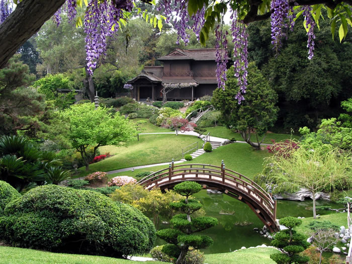 10 japanese gardens you would love to chill out in 2 - Japanese Garden Cherry Blossom Bridge