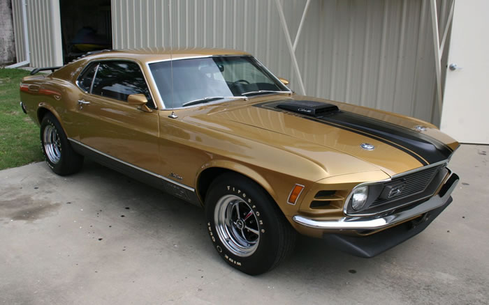 classic ford mustang (13)