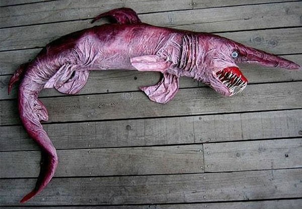 21 More Weird Animals You Never Knew Existed 1