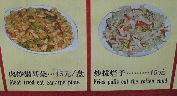 Chinese Sign Translation Fails 10