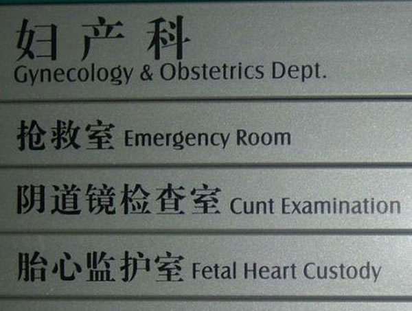 Chinese Sign Translation Fails 20