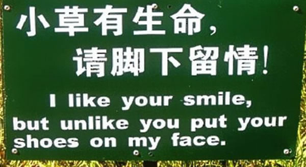 Chinese Sign Translation Fails 25