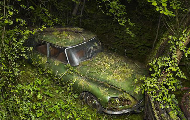 citroen swallowed by nature