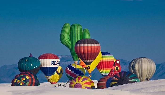 hot air balloon (9)