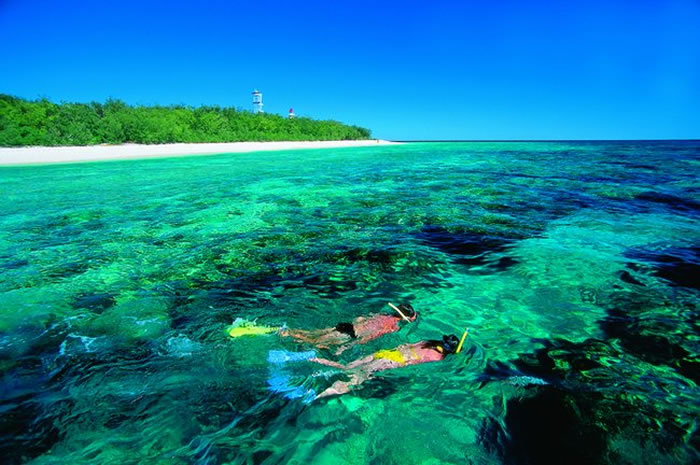 how to visit great barrier reef