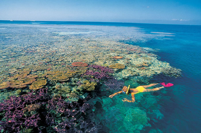 places to visit before you die great barrier reef (13)