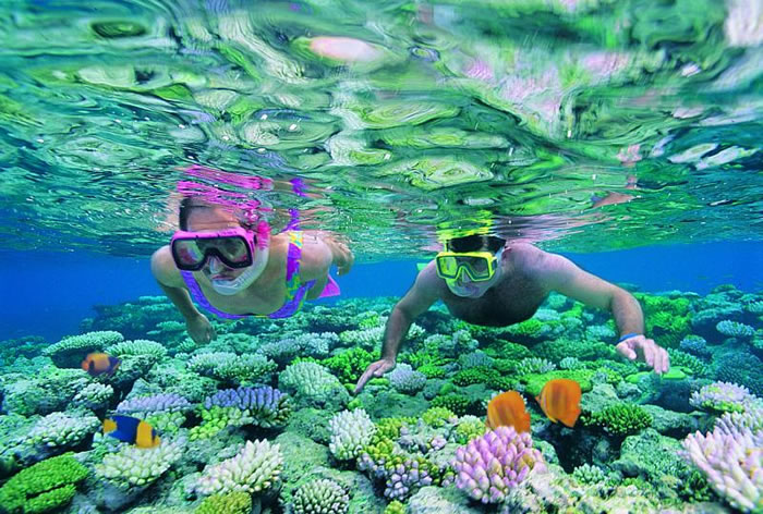 places to visit before you die great barrier reef (3)