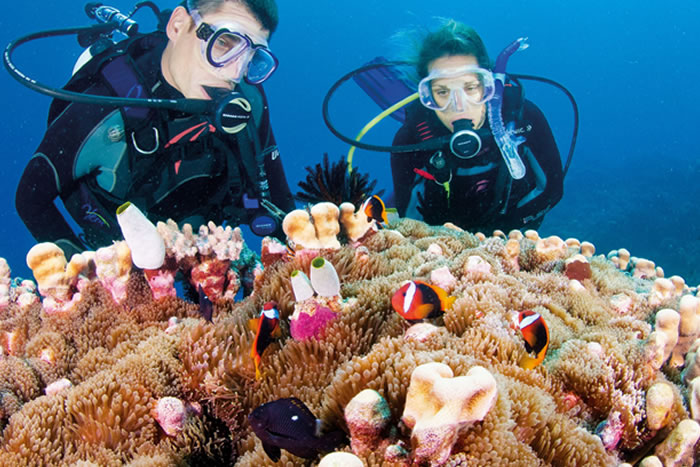 places to visit before you die great barrier reef (5)