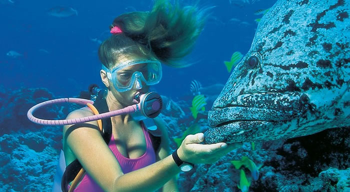places to visit before you die great barrier reef (9)