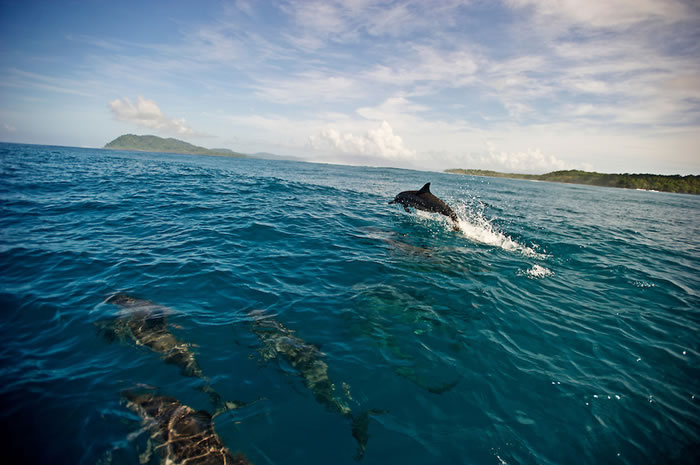 places to visit before you die - solomon islands (18)