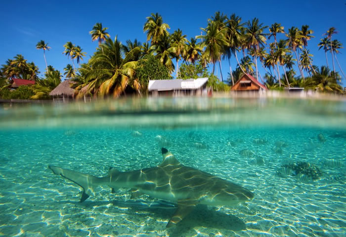 places to visit before you die - solomon islands (5)