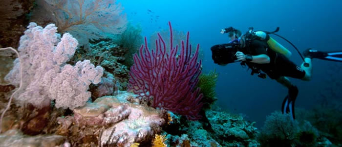 places to visit before you die - solomon islands (9)