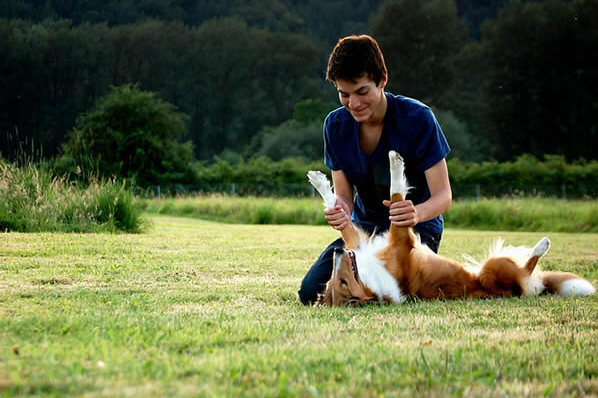 10 Reasons Why You Should Date A Dog Owner 1