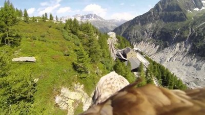 Amazing Video Showing Birds Eye View Goes Viral - Watch It Here