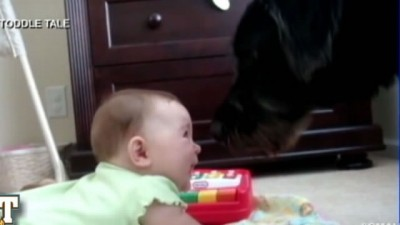 Baby Laughing At dog Barking
