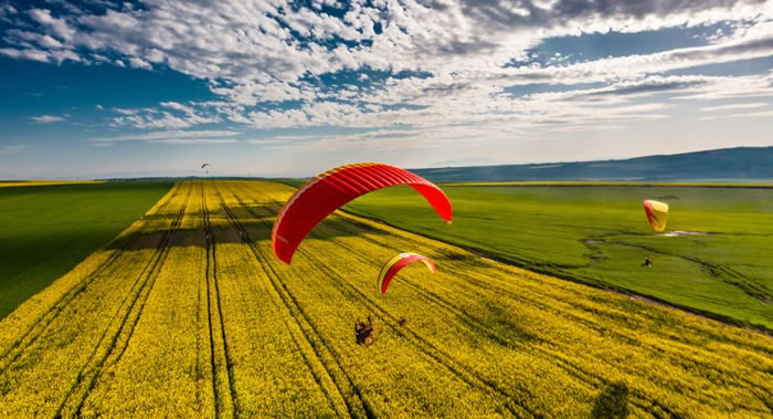 daily adventures - paragliding (11)