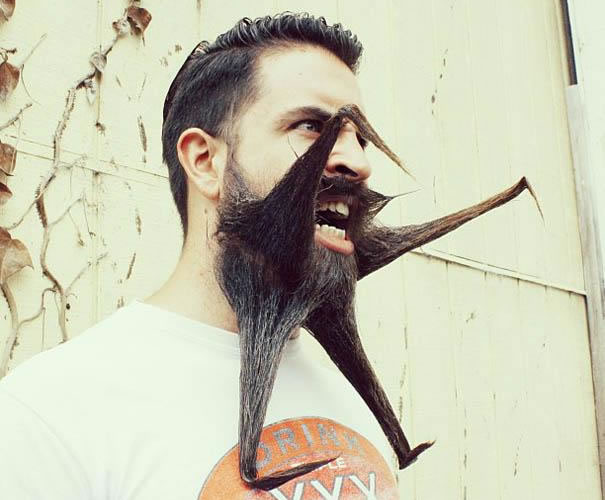 daily wtf - mr crazybeard (10)