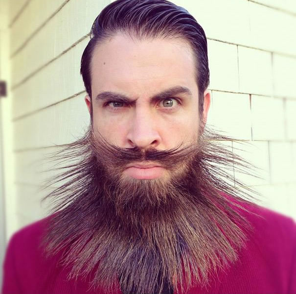 daily wtf - mr crazybeard (9)
