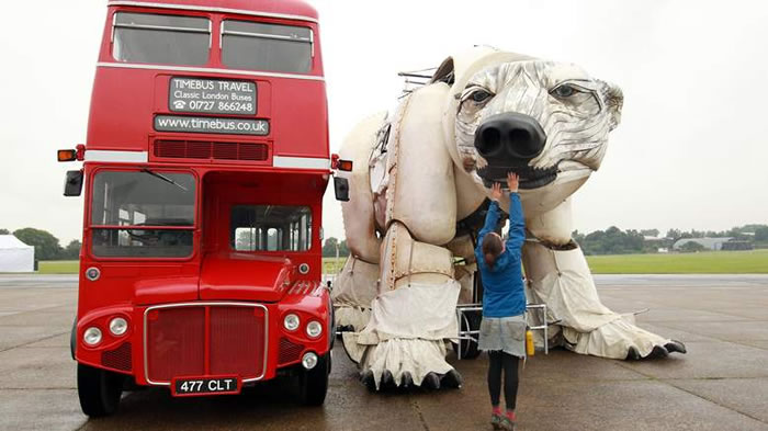 largest polar bear in the world (1)