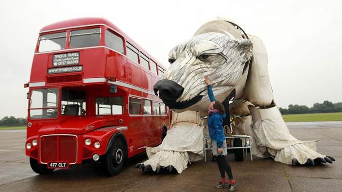 largest polar bear in the world (2)