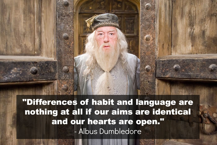 profound quotes from harry potter (2)